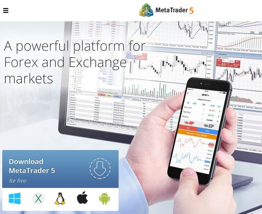 MetaTrader Website